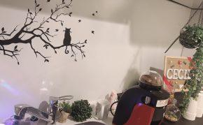 渋谷店チャットレディフォトギャラリー